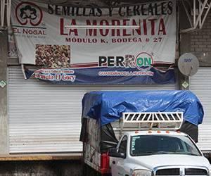 Pgr Secures A Jaguar In Central De Abastos De Leon