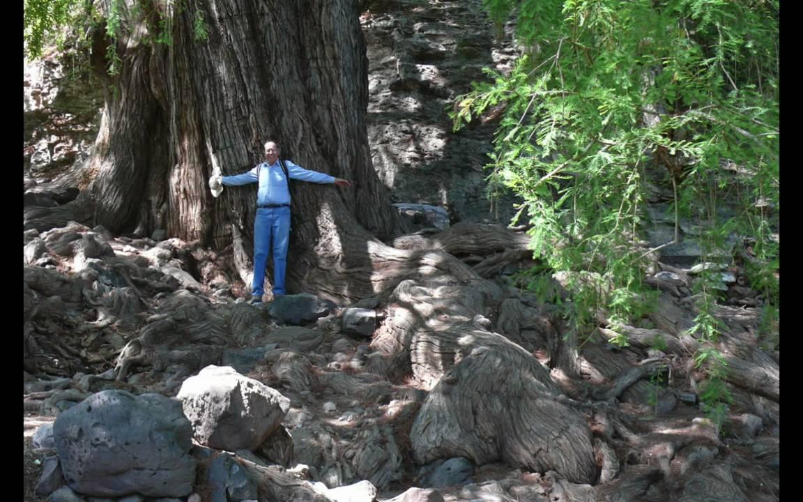 La Huertas Hike, San Miguel de Allende (Google)