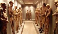 mummy museum- guanajuato