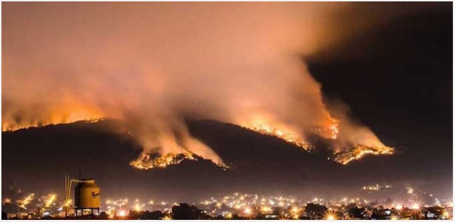 Forest fire in San Luis Potosí 2015 (Photo: Archive/ El Pulso)