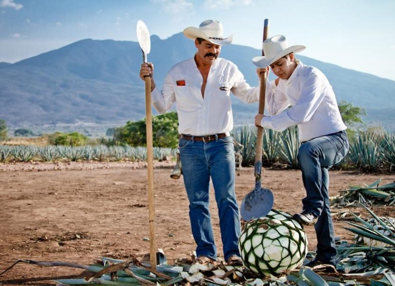 tequila agaveros