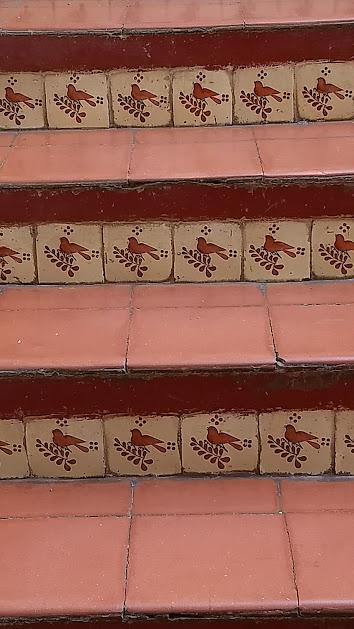 cardinal steps1