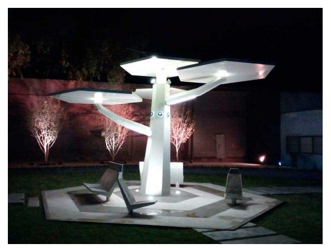 """""""Intelligent Tree"""" (Photo: Guillermo Villegas for Periodico Correo)"""