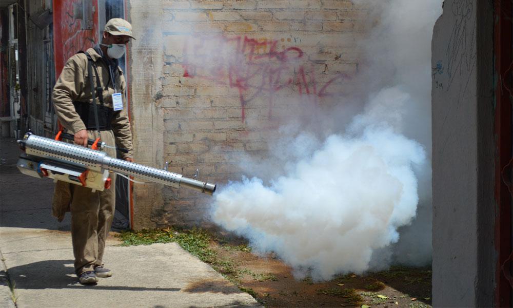 dengue in guanajuato