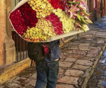 sma flower man