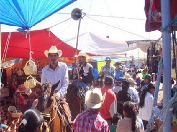 Martin's horses in Market