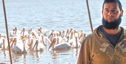 pelicanos-adornan-lagunas-de-guanajuato-05e362ce5ae6f0a28f1b45487e902190