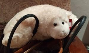 sheep in purse