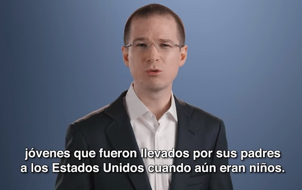 Anaya video