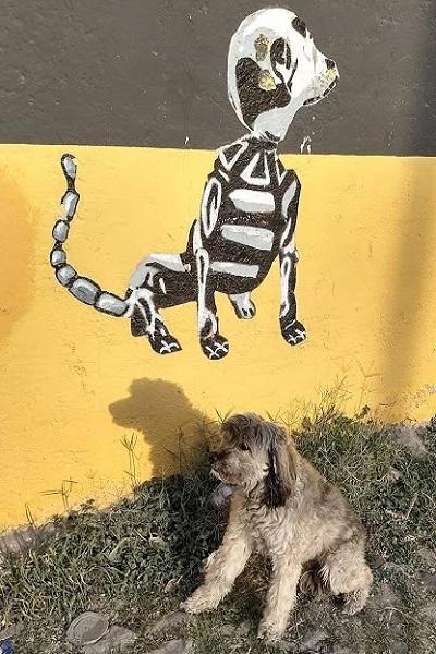 mural jasper