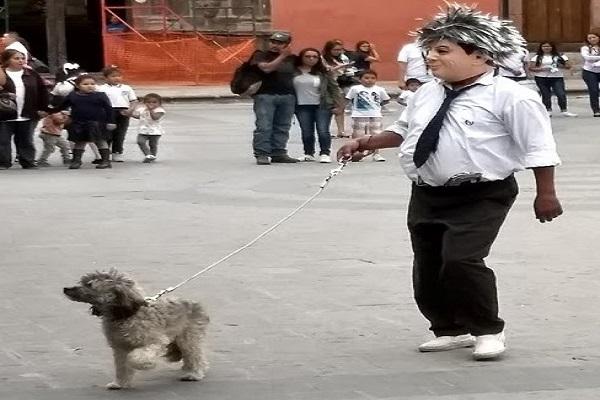 canicula dog