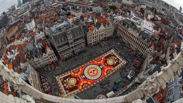 bruselas_tapete_floral_01.jpg_1741123634